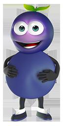 Berry de vlierbes zorgt voor de ondersteuning van je weerstand en immuunsysteem.