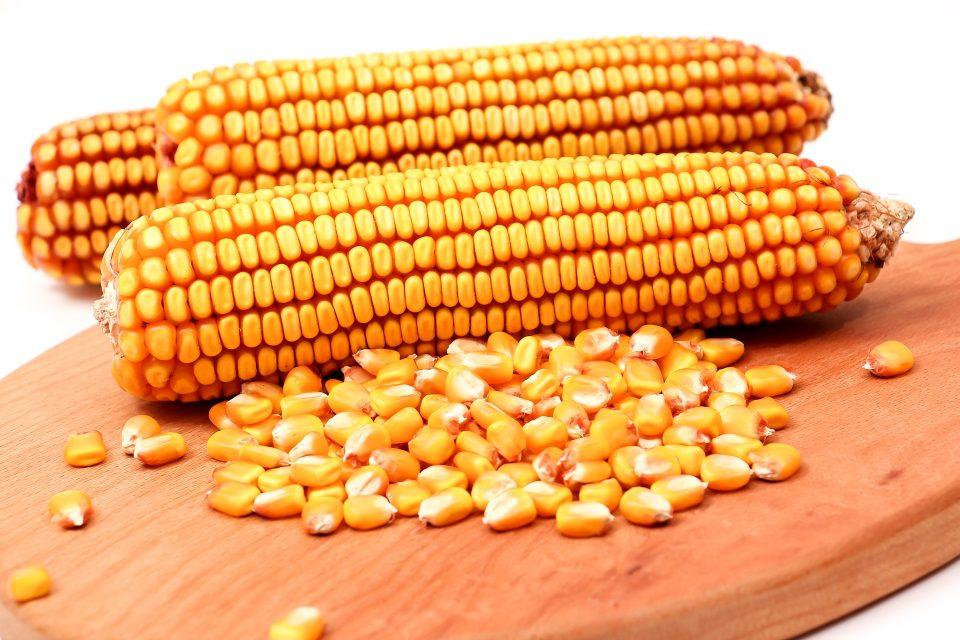 Zink zit in Sambucol en o.a. in maïs en ondersteunt je weerstand.